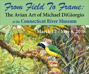 From Field to Frame: The Avian Art of Michael DiGiorgio - at the Connecticut River Museum, Essex, CT! Click for more info.