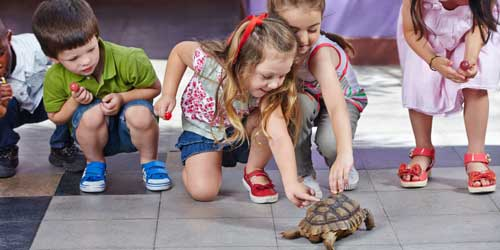 Kids with Turtle Roger Williams Park Zoo Providence Rhode Island