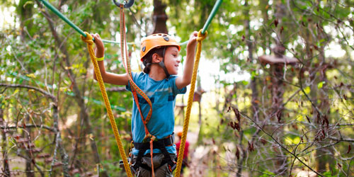Seacoast Fun Park, Crazy Apes Adventure Trails and Zip Park , and Snow Park,