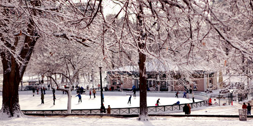 skating-on-frog-pond-at Boston Public Garden credit-MOTT