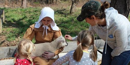 Old Sturbridge Village Lamb Sturbridge MA