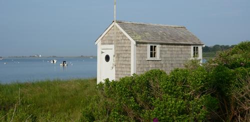 Cape Cod nationa Seashore trails