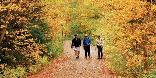 Top 10 Country Walks in New England