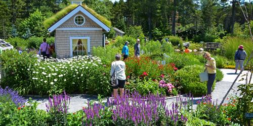 Summer in New England - Maine Botalican Garden in Bloom