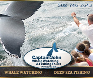 Captain John Whale Watching and Fishing Tours