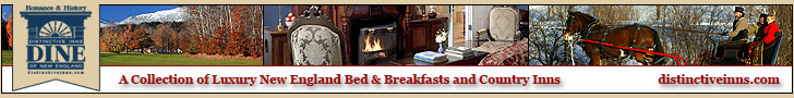 Distinctive Inns of New England - A Collection of New England Luxury B&Bs and Country Inns. Click for more info.