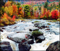 Editor's Choice –  North Conway, Kancamagus & North Woodstock