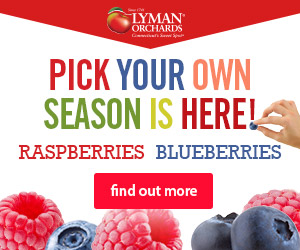 Pick Your Own Season is here! Come get your fresh blueberries & raspberries at Lyman Orchards in Middlefield, CT - Click here for more info.