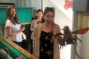 Lobster Ladies - Rhode Island Red Food Tours - Providence & Newport, RI